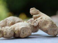 Tratamente naturiste pentru eliminarea pintenilor ososi